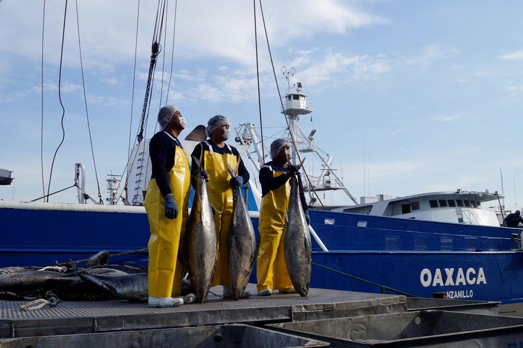 Anuncia Grupomar inicio de la temporada de pesca 2021